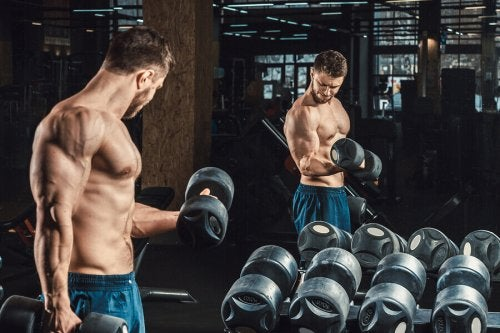 How to Get Bigger Biceps in Three Steps
