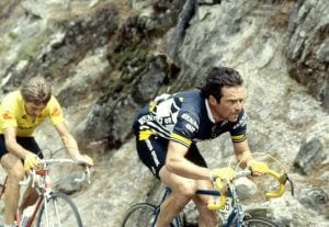 Bernard Hinault cycling through the mountains.