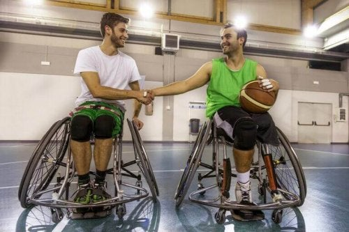 The Spanish Paralympic Committee: an Overview