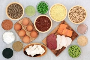 Sources of plant and animal protein.