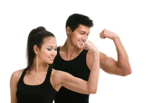 Is It Possible to Build Muscle On a Vegan Diet?