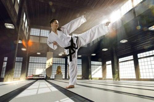 Martial Arts: Facts and Characteristics