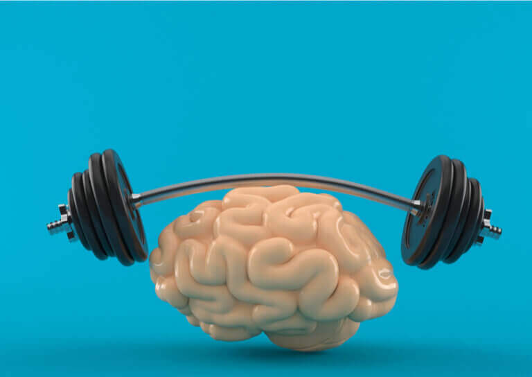 Can Physical Activity Stimulate the Brain?