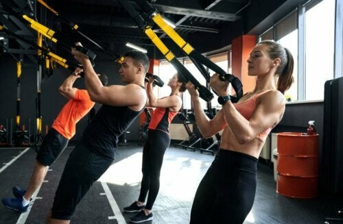 group of people doing the low row exercise with trx equipment in a gym