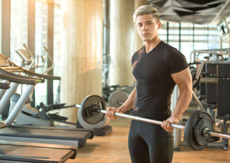 Routine to Increase Muscle Mass