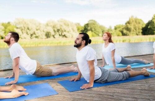 group of yogis doing cobra pose outside on yoga mats